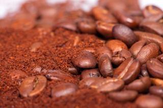 granos de café fresco