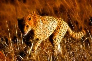 guepardo corriendo cuerpo abstracto