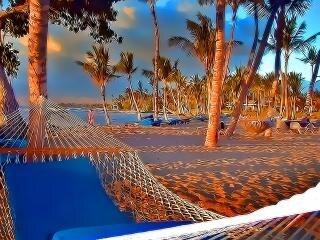 Hamaca Playa Fotos Y Vectores Gratis