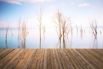 Hermoso cielo y el río con el piso
