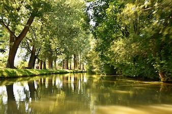 Hermoso paisaje de verano con el río. Canal de Bata. Hermoso paisaje en la República Checa.