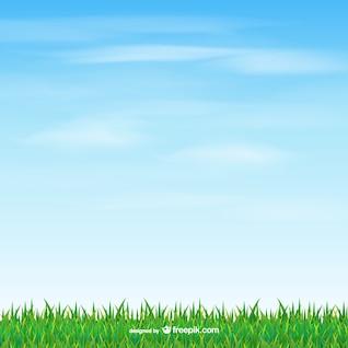 Hierba y el cielo de vectores