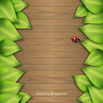 Hojas en el fondo de madera
