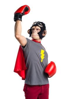 Hombre afortunado del mono del super héroe con los guantes de boxeo