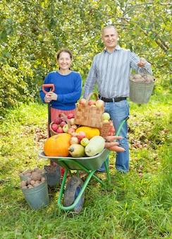 Hombre, mujer, cosechado, vegetales