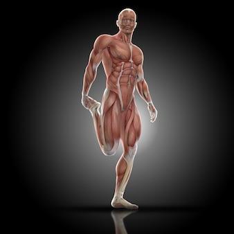 Hombre musculado estirando su cuadriceps