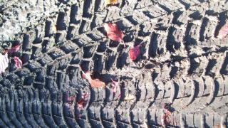 huella del neumático textura, automóvil