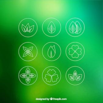 Iconos de hoja