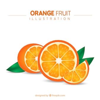 Ilustración de la fruta naranja