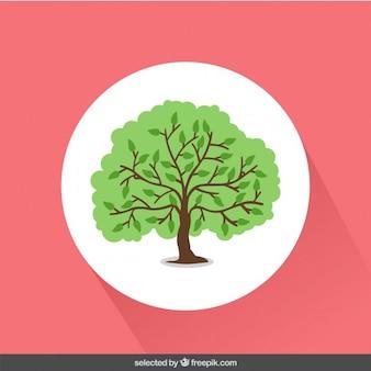 Ilustración verde árbol
