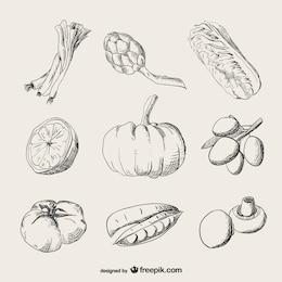 Ilustraciones realistas de verduras