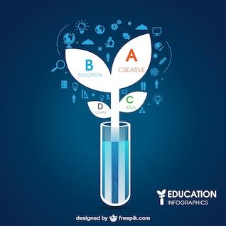 Infografía de educación y ciencia
