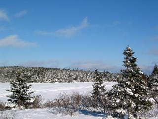 Invierno maravilla natural