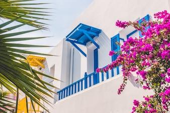 Isla mediterránea tradicional viajes grecia
