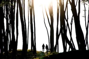 La gente en el oscuro bosque misterioso.