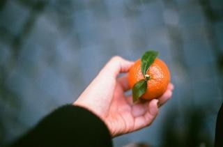 la mandarina