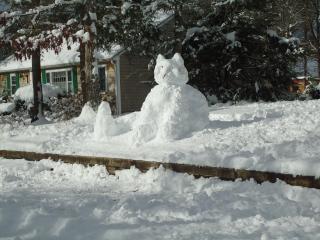 la nieve gatito