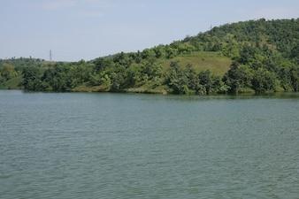 Lago con una montaña con arboles