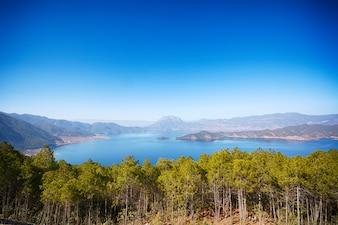 Lago en un bosque visto desde arriba