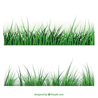 Las fronteras de la hierba