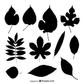 Colección de siluetas de hojas