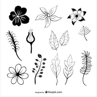 Siluetas de hojas y flores