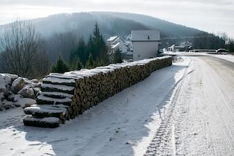 Leña Pilas de troncos a lo largo del camino forestal.