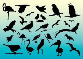 libre de las aves siluetas vector