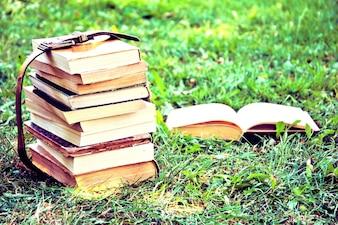 Libros. Educación y concepto de regreso a la escuela.