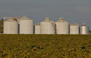 Los tanques de procesamiento de vino