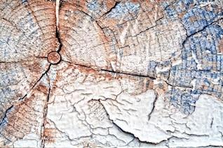 madera agrietada textura