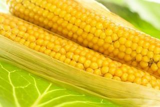 maíz, ingrediente