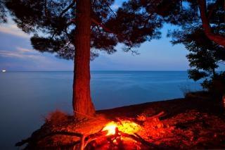 Mar noche escena