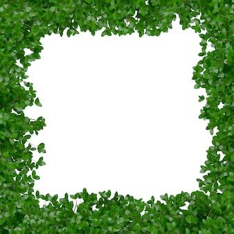 Marco con hojas verdes