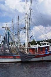 marinas buques, buque