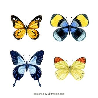 Mariposas Acuarela