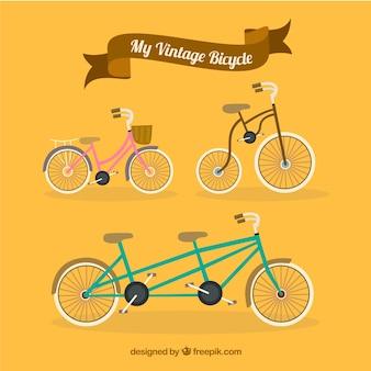 Mi bicicleta vintage