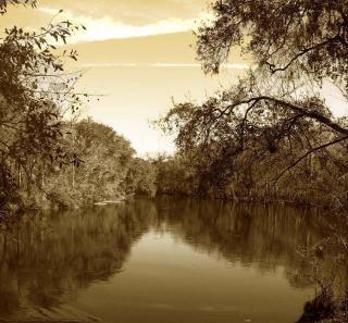 Mirando hacia abajo nuestro río