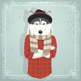 Modelo de moda Husky