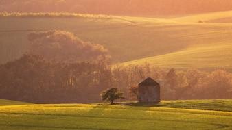 Molino de viento en el paisaje de Moravia del sur