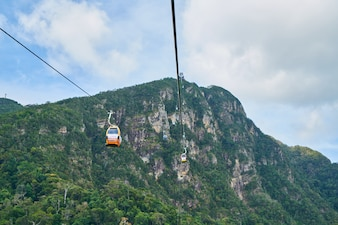 Montaña con arboles y un teleférico