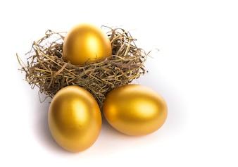 Nido con huevos dorados