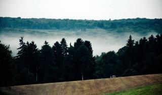 niebla de la montaña