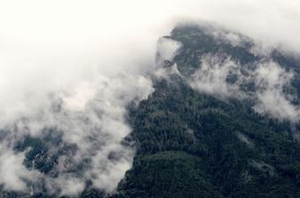 Niebla en la cima de la montaña