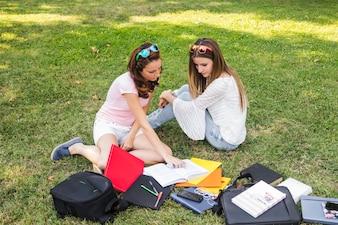 Niñas estudiando en el césped