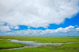 Normandía pasto hdr ambiental