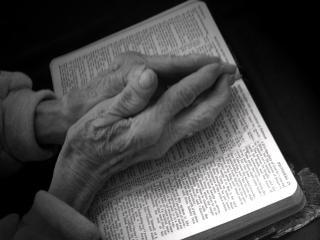 orando las manos sobre la Biblia - en blanco y negro