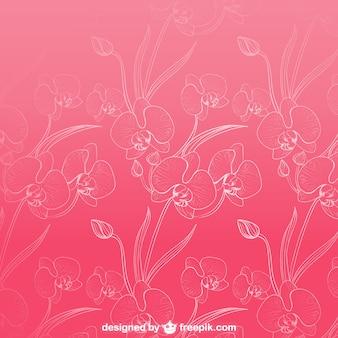 Patrón de fondo de orquídeas