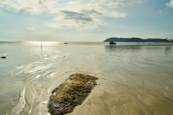 Orilla de la playa con rocas