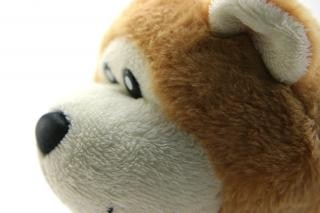 oso de peluche clásico, con los pies